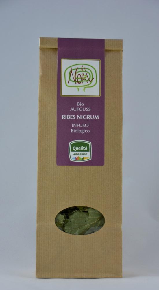 Schwarze Johannisbeeren-Tee bio (Ribes Nigrum L.) - 1